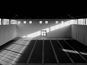 Mikael Levin, Arena, 2006