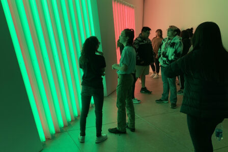 Students viewing Flavin