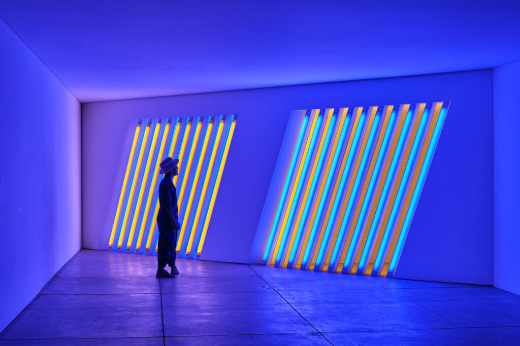 Dan Flavin, untitled (Marfa project), 1996